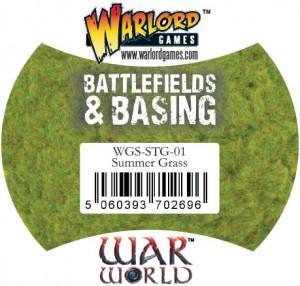 WGS-STG-01